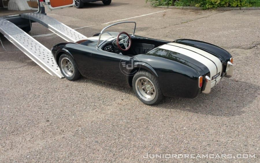 Cobra 1 Zwart